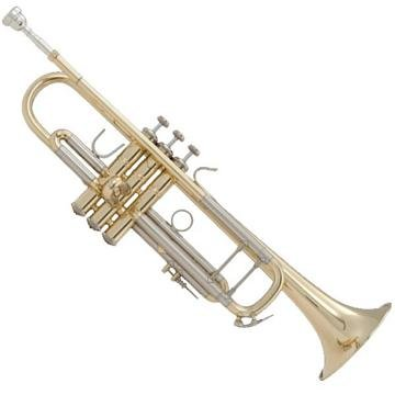 Trumpet Brands: What Brand Is Best For Every Trumpet Player