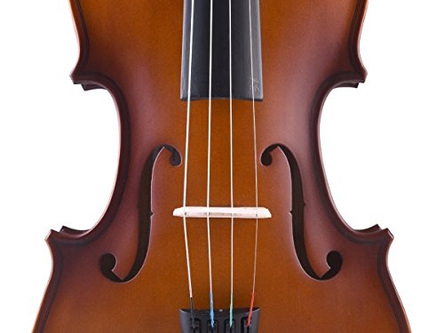 ADM Handcrafted Solid Wood Student Acoustic Violin Starter Kits
