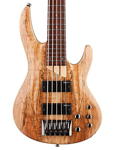 ESP LTD B Series B-205 Five-String Bass Guitar