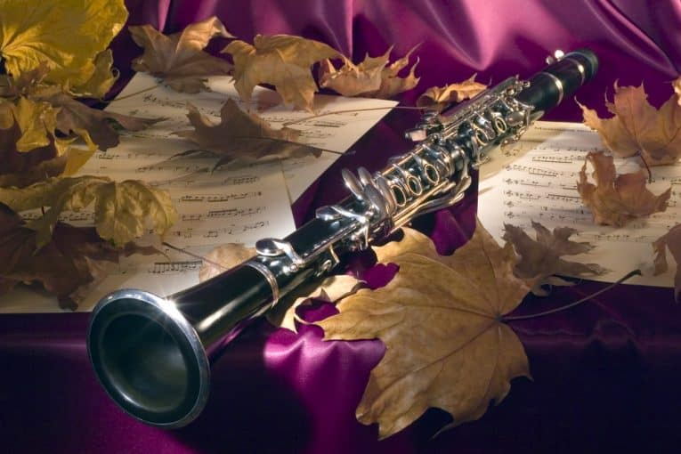 Selmer CL211 Intermediate Bb Clarinet Review